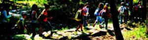 educación ambiental ecoturismo rutas en la naturaleza visitas guiadas a espacios naturales  de segovia
