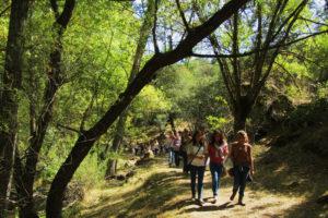 Camino del Río Pirón en Segovia