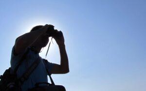 Observación de aves en Segovia